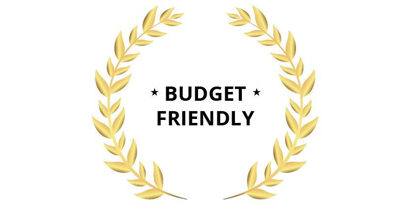 Motion Graphics budget friendly icon 01